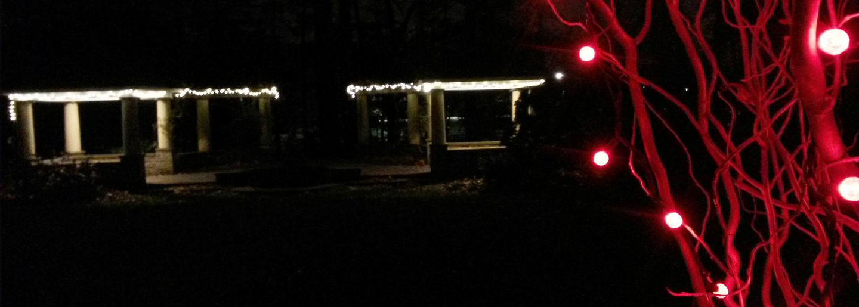 Winter Wonderland at Temple Ambler - December 6