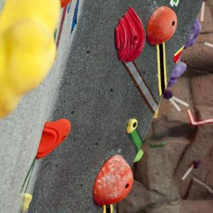 rocks on the climbing wall
