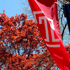 Temple T flag at Temple Ambler.