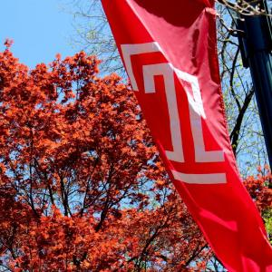 T flag flying high at Temple University Ambler.