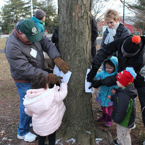 Celebrate Tu B'Shevat, The Jewish New Year of Trees, at Temple Ambler.