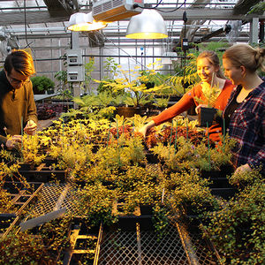 Plants are being readied in the Ambler Campus Greenhouse for the 2019 Philadelphia Flower Show
