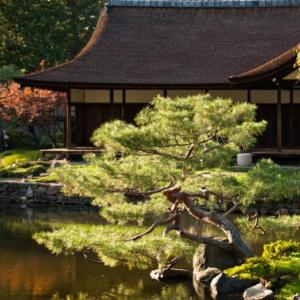 Japanese Garden Design — The Stroll Garden: Sharee Solow - Wednesday, November 14