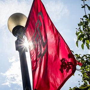 Temple University Ambler Flag
