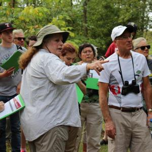 Cindy Ahern leads a bird walk through the trails of the Ambler Arboretum of Temple University.