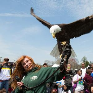 Trainer with eagle