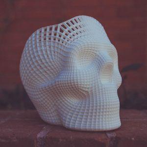 3D print of head