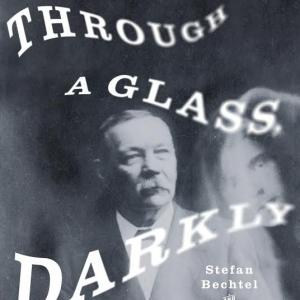 through a glass darkly book cover