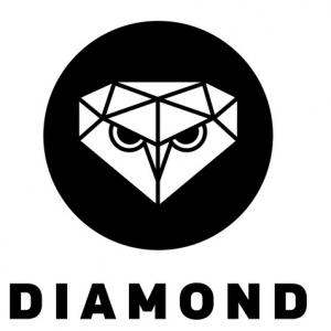 The Diamond Leadership Program logo in black and white