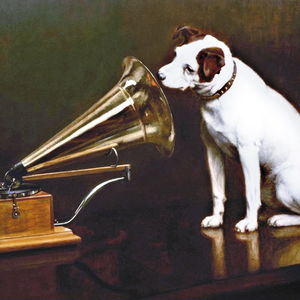 Dog and a gramophone