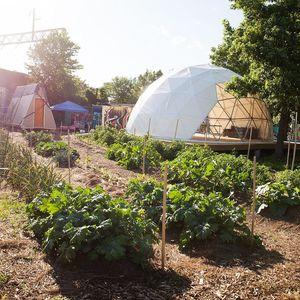 Life Do Grow farm