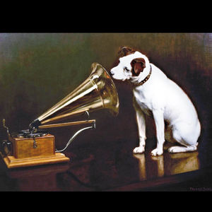 Dog looking into gramophone