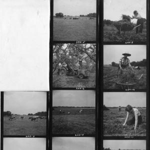 negatives of people gardening