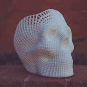 Photo of a 3D printed skull