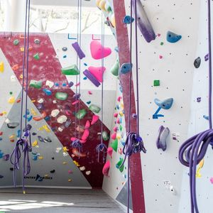 The Aramark Student Training and Recreation Complex, Climbing Wall in the sunlight with purple climbing ropes hanging down.