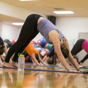 A group of participants on yoga mats partaking in a yoga group fitness session.