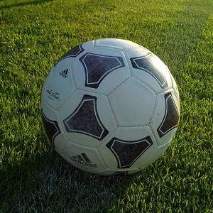 Soccer ball sitting on grass.