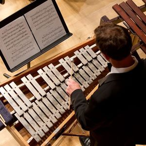 birds-eye view of man in suit playing a large xylophone